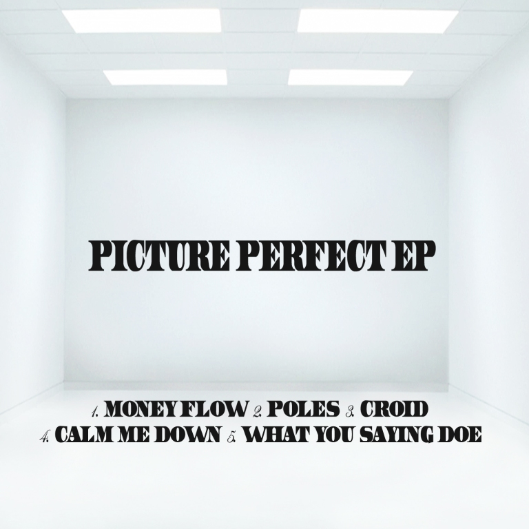 Picture Perfect EP Back Cover